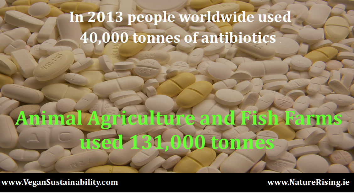 http://naturerising.ie/wp-content/uploads/2019/09/antibiotics-1.png