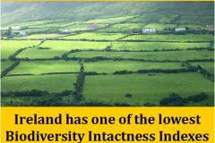 http://naturerising.ie/wp-content/uploads/2019/10/BiodiversityIntactness.png