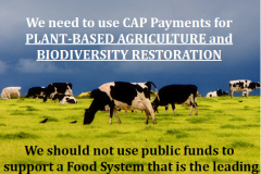 http://naturerising.ie/wp-content/uploads/2019/10/EndSubsidies.png