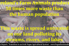 http://naturerising.ie/wp-content/uploads/2019/09/waste.png